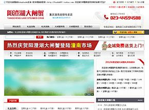 卖大闸蟹的网站,风格适用装饰公司、广告传媒,商城风格