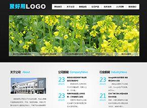 聚好用CMS_还不错的模板,清爽干净企业网站模板