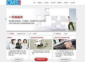策划公司网站模板,清爽大气,解决方案型网站模板